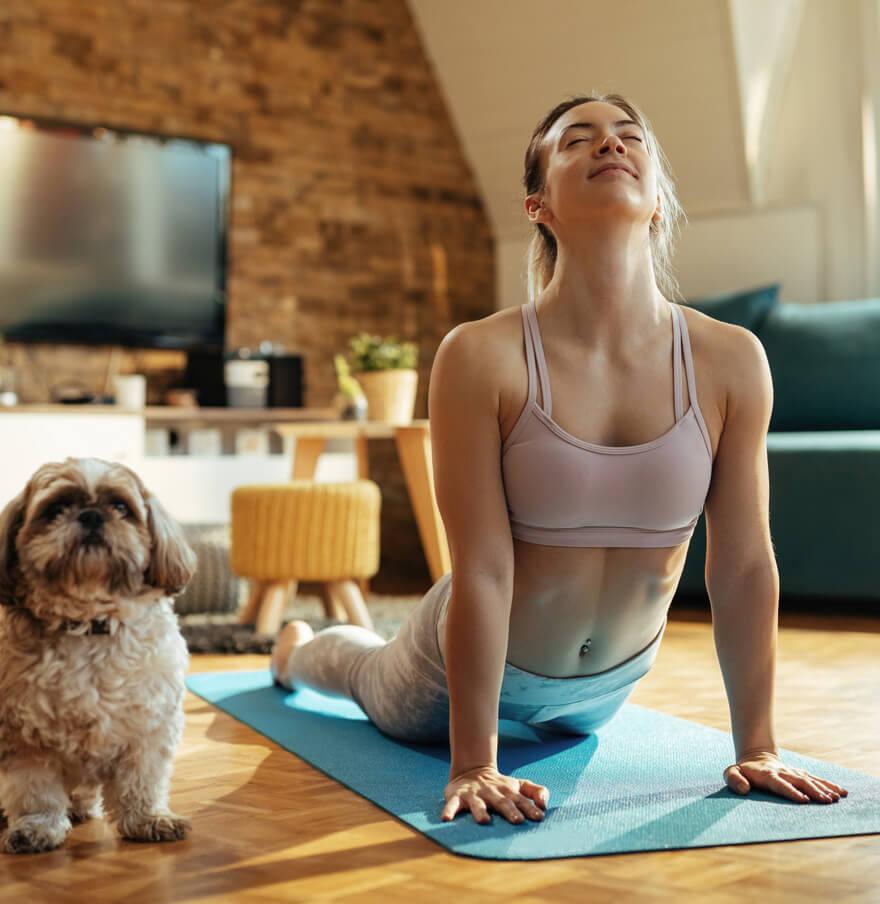 Frau auf Yogamatte im der Stellung aufschauender Hund mit Malteser Hund daneben